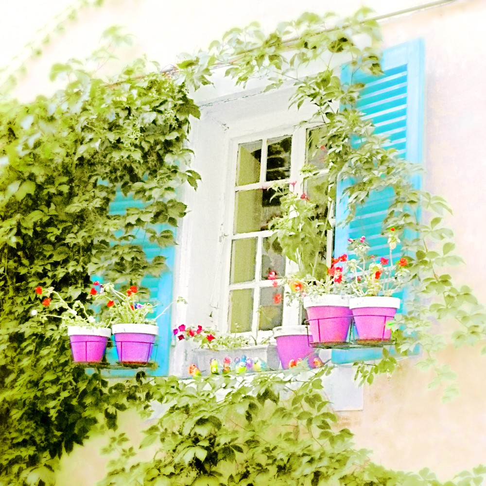 The Quiet Life French Window Photograph Art Print